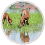 Brown Horse And Foal Nature Spring Scene Round Beach Towel