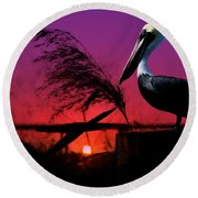 Brown Pelican At Sunset - Painted Round Beach Towel
