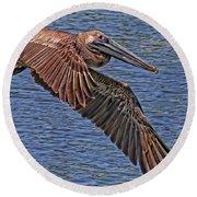 Brown Pelican Flyby Round Beach Towel
