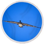 Brown Pelican Flying Round Beach Towel