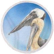 Brown Pelicans Round Beach Towel