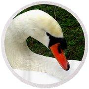 Bruges Swan 2 Round Beach Towel
