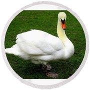Bruges Swan 3 Round Beach Towel