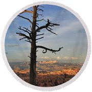 Bryce Canyon Dead Tree Sunset 3 Round Beach Towel