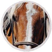 Bryce Canyon Horseback Ride Round Beach Towel