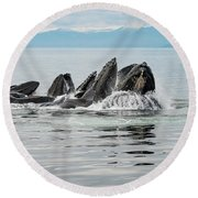 Bubble-net Group With Mountains In Alaska Round Beach Towel