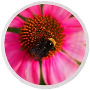 Bumble On A Pistil Round Beach Towel