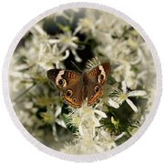 Buckeye On Wildflowers Round Beach Towel