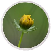 Bud About To Bloom Round Beach Towel