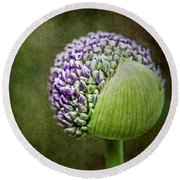 Budding Allium Round Beach Towel