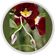 Buds And Blooms Orchid Round Beach Towel