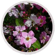 Buds And Petals- Pink Roses- Rose Bush- Floral Art Round Beach Towel