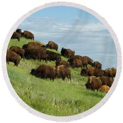 Buffalo Herd Round Beach Towel