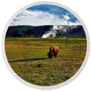 Buffalo In Yellowstone Round Beach Towel