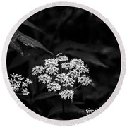 Bug On Flowers Black And White Round Beach Towel