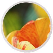 Bug View Of Tulip Round Beach Towel