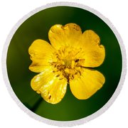 Build Me Up Buttercup Round Beach Towel