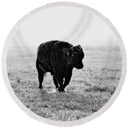 Bull After Ice Storm Round Beach Towel