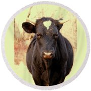 Bull Round Beach Towel