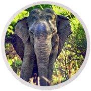 Bull Elephant Threat Round Beach Towel