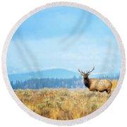 Bull Elk Meadow Round Beach Towel