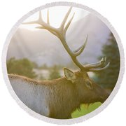 Bull Elk Profile Round Beach Towel