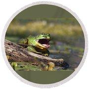 Bull Frog Round Beach Towel
