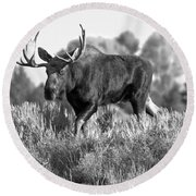 Bull On A Blue Sky Day Black And White Round Beach Towel
