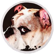 Bulldog Art - Let's Play Round Beach Towel by Sharon Cummings