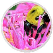 Bumble Bee And Flower Round Beach Towel