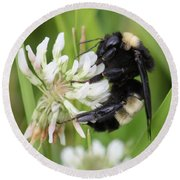 Bumble Bee By The Pond Round Beach Towel