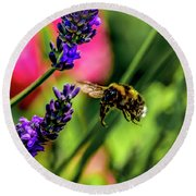 Bumble Bee In Flight Round Beach Towel