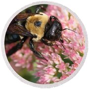 Bumble Bee Macro Round Beach Towel