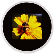 Bumble Bee On Yellow Flower Round Beach Towel
