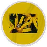 Bumble Bee Sitting On Black-eyed Susan Round Beach Towel