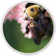 Bumble From Above Round Beach Towel