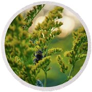 Bumblebee And Canadian Goldenrod 15 Round Beach Towel