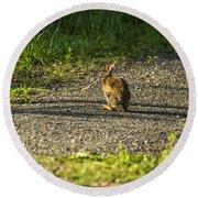 Bunny Eating On The Run Round Beach Towel