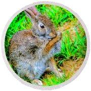 Bunny Secrets Round Beach Towel