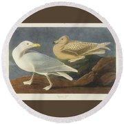 Burgomaster Gull Round Beach Towel