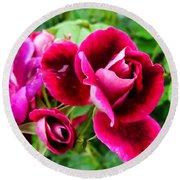 Burgundy Rose And Rose Bud Round Beach Towel