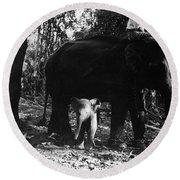 Burma: Elephants, 1960 Round Beach Towel