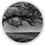 Burr Oak Tree Round Beach Towel