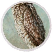 Burrowing Owl Round Beach Towel by James W Johnson