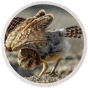 Burrowing Owlet Workout Round Beach Towel