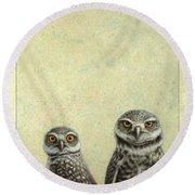 Burrowing Owls Round Beach Towel by James W Johnson