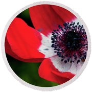 Burst Of Red Round Beach Towel
