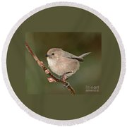 Bushtit On A Branch Round Beach Towel