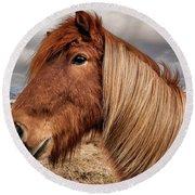 Bushy Icelandic Horse Round Beach Towel by Pradeep Raja PRINTS