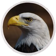 bust image of a Bald Eagle Round Beach Towel